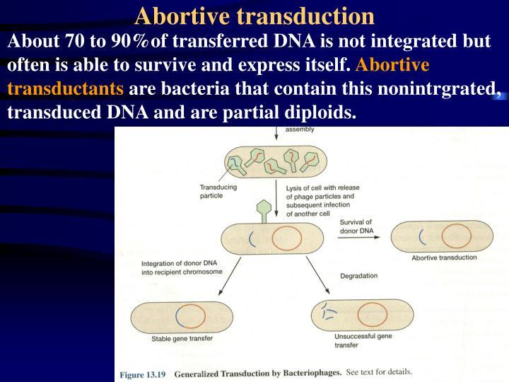 Abortive transduction