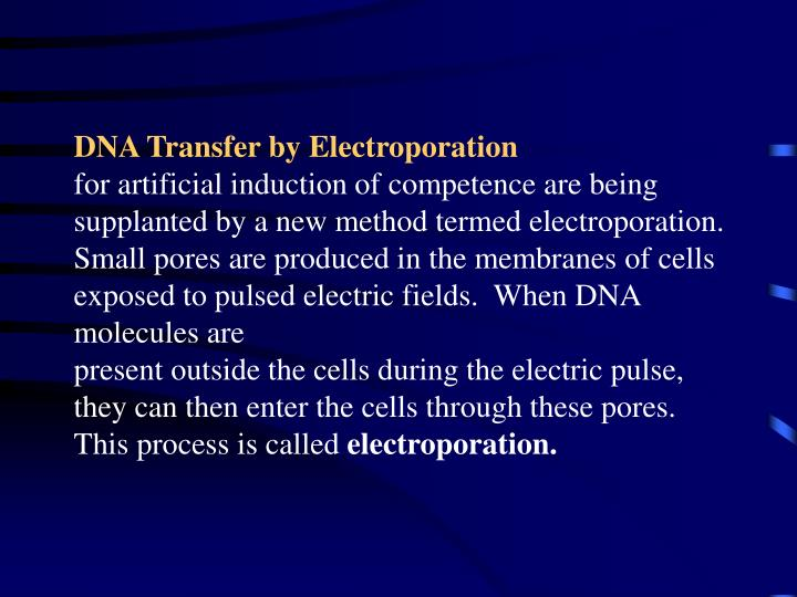 DNA Transfer by Electroporation