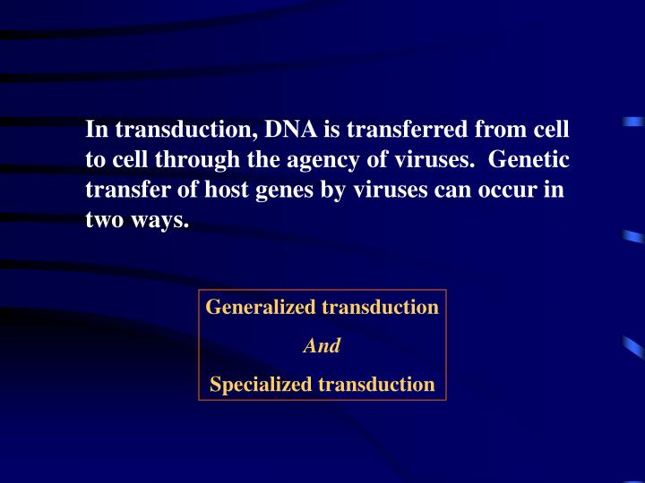 In transduction, DNA is transferred from cell to cell through the agency of viruses.  Genetic transfer of host genes by viruses can occur in two ways.
