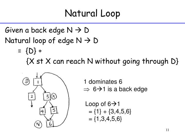 Natural Loop