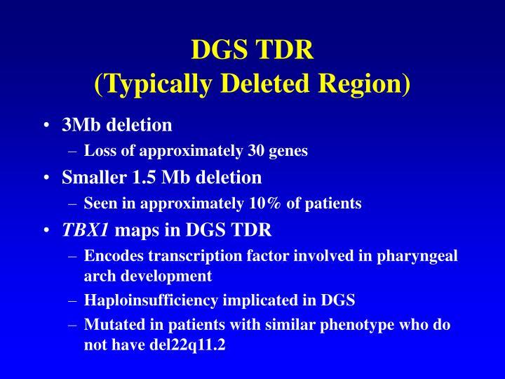DGS TDR