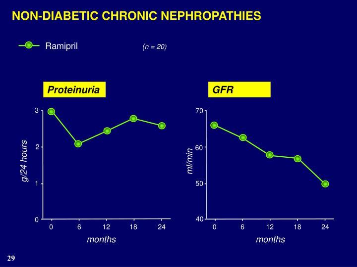 NON-DIABETIC CHRONIC NEPHROPATHIES