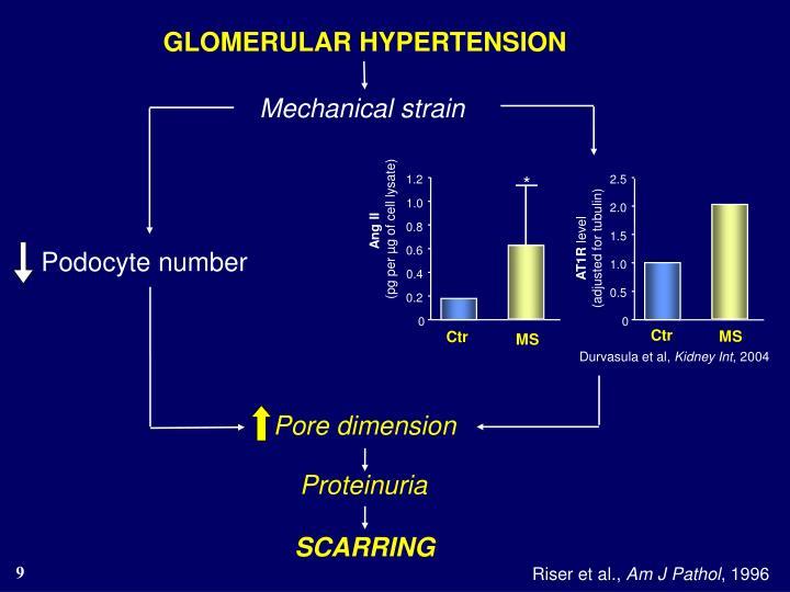 GLOMERULAR HYPERTENSION