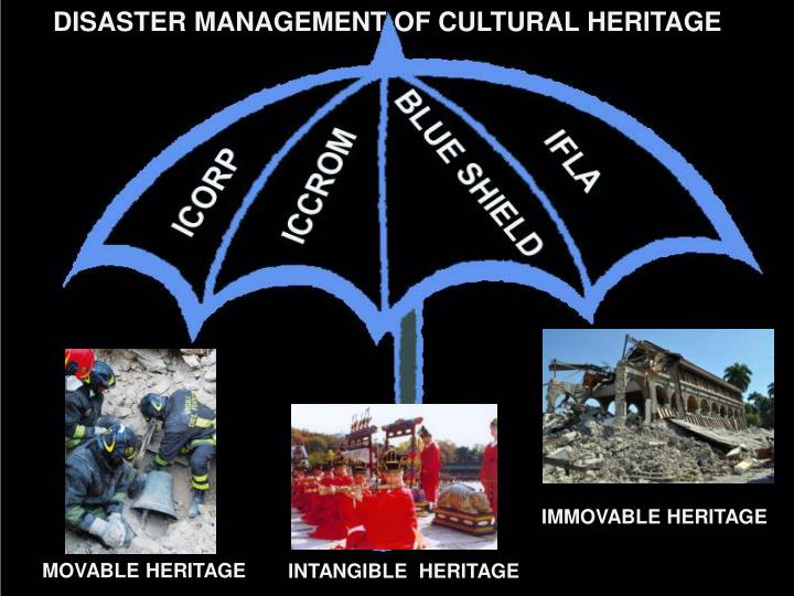 DISASTER MANAGEMENT OF CULTURAL HERITAGE
