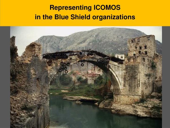 Representing ICOMOS