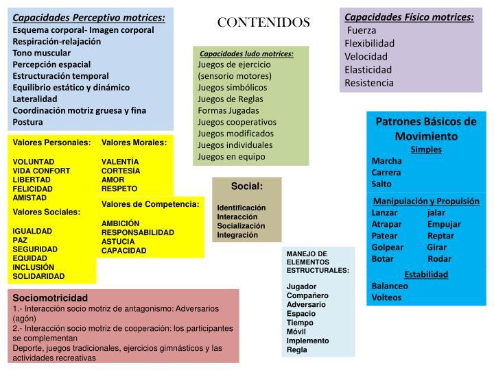 Capacidades Perceptivo motrices: