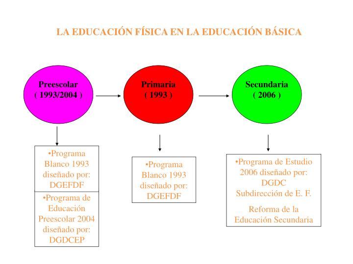 LA EDUCACIÓN FÍSICA EN LA EDUCACIÓN BÁSICA