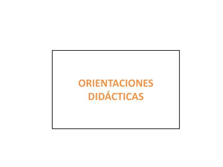 ORIENTACIONES DIDÁCTICAS