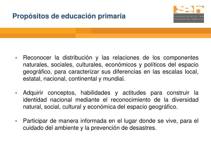 Propósitos de educación primaria