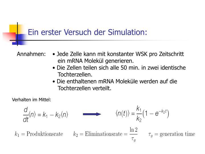 Ein erster Versuch der Simulation: