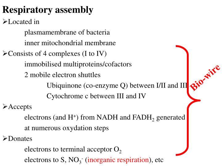 Respiratory assembly