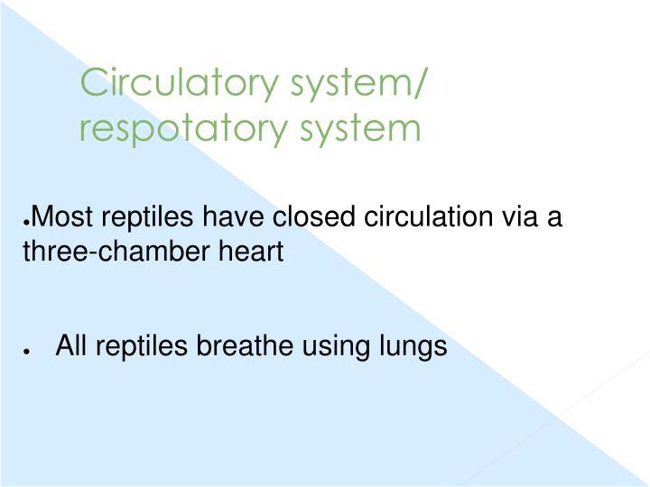 Circulatory system/ respotatory system