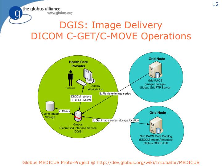 DGIS: Image Delivery