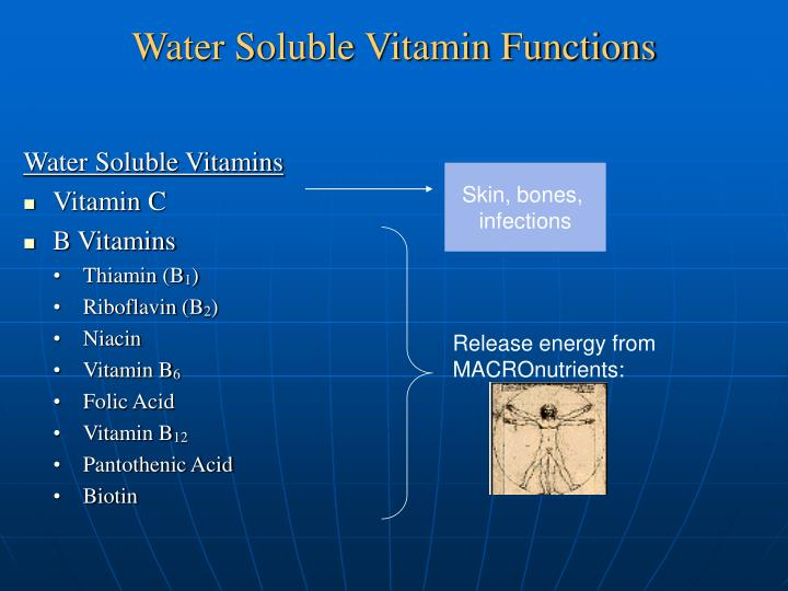 Water Soluble Vitamin Functions