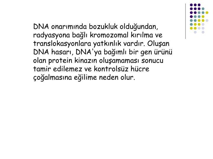 DNA onarmnda bozukluk olduundan, radyasyona bal kromozomal krlma ve translokasyonlara yatknlk vardr. Oluan DNA hasar, DNA'ya baml bir gen rn olan protein kinazn oluamamas sonucu tamir edilemez ve kontrolsz hcre oalmasna eilime neden olur.