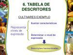 6 tabela de descritores12