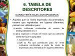 6 tabela de descritores13