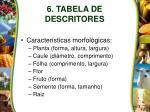 6 tabela de descritores4