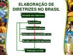 elabora o de diretrizes no brasil