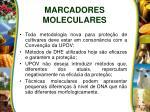marcadores moleculares1