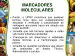 marcadores moleculares2