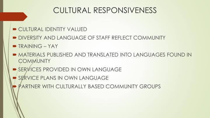 CULTURAL RESPONSIVENESS