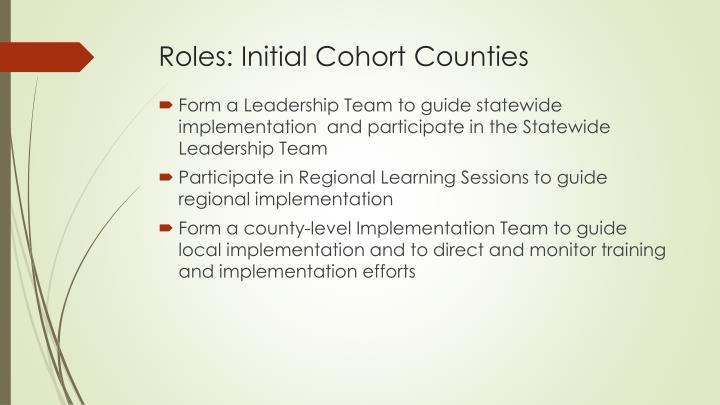 Roles: Initial Cohort Counties