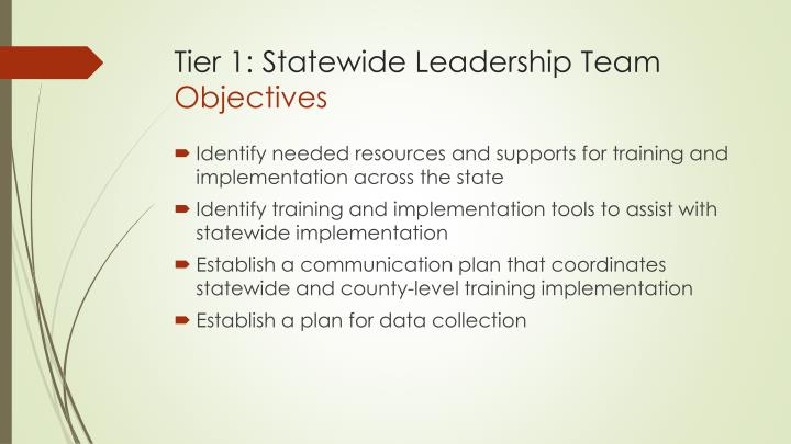 Tier 1: Statewide Leadership Team