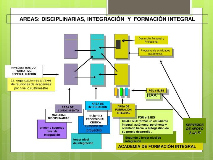 AREAS: DISCIPLINARIAS, INTEGRACIÓN  Y  FORMACIÓN INTEGRAL