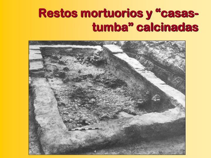 """Restos mortuorios y """"casas-tumba"""" calcinadas"""