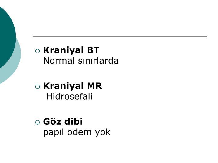 Kraniyal BT