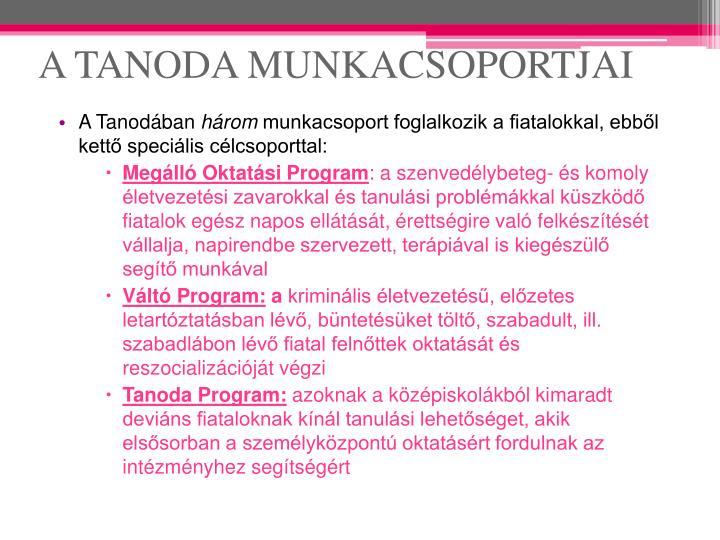 A TANODA MUNKACSOPORTJAI