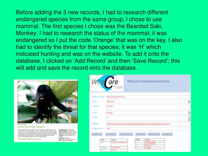 Before adding the 3 new records, I had to research different endangered species from the same group; I chose to use mammal. The first species I chose was the Bearded Saki, Monkey; I had to research the status of the mammal; it was endangered so I put the code 'Orange' that was on the key. I also had to identify the threat for that species; it was 'H' which indicated hunting and was on the website. To add it onto the database, I clicked on 'Add Record' and then 'Save Record'; this will add and save the record onto the database.