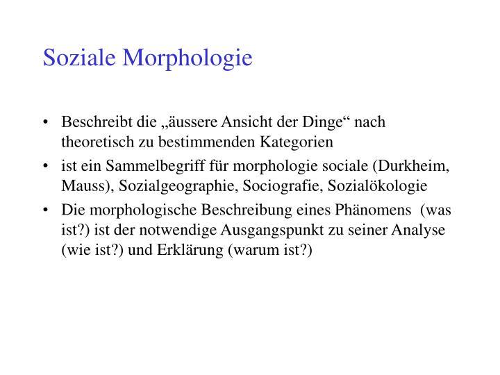 Soziale Morphologie