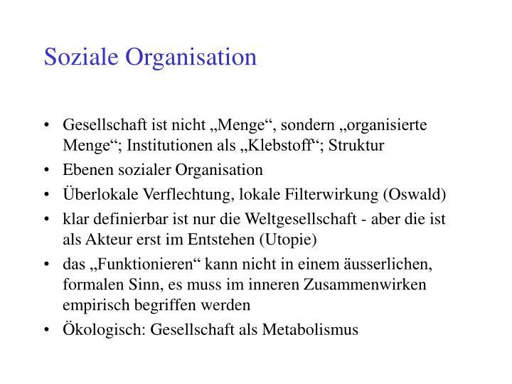 Soziale Organisation