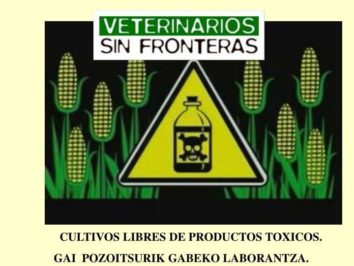 CULTIVOS LIBRES DE PRODUCTOS TOXICOS.