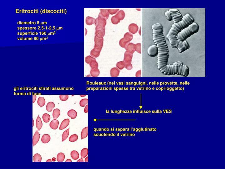 Rouleaux (nei vasi sanguigni, nelle provette, nelle preparazioni spesse tra vetrino e coprioggetto)