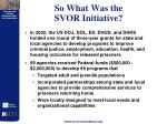 so what was the svor initiative