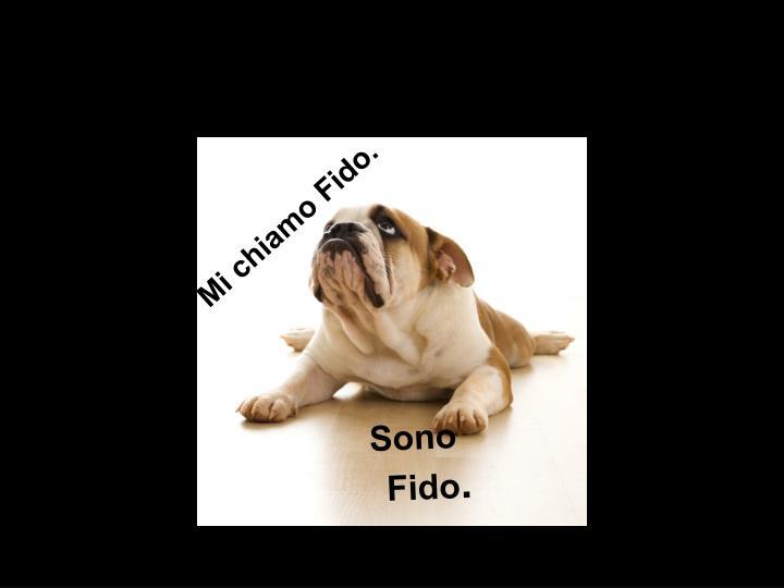 Mi chiamo Fido.