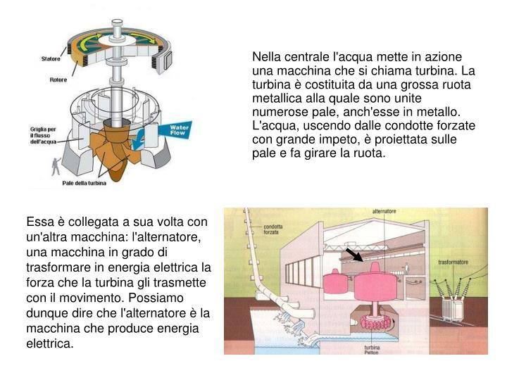 Nella centrale l'acqua mette in azione una macchina che si chiama turbina. La turbina è costituita da una grossa ruota metallica alla quale sono unite numerose pale, anch'esse in metallo. L'acqua, uscendo dalle condotte forzate con grande impeto, è proiettata sulle pale e fa girare la ruota.