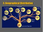 3 geographical distribution
