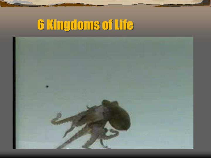6 Kingdoms of Life