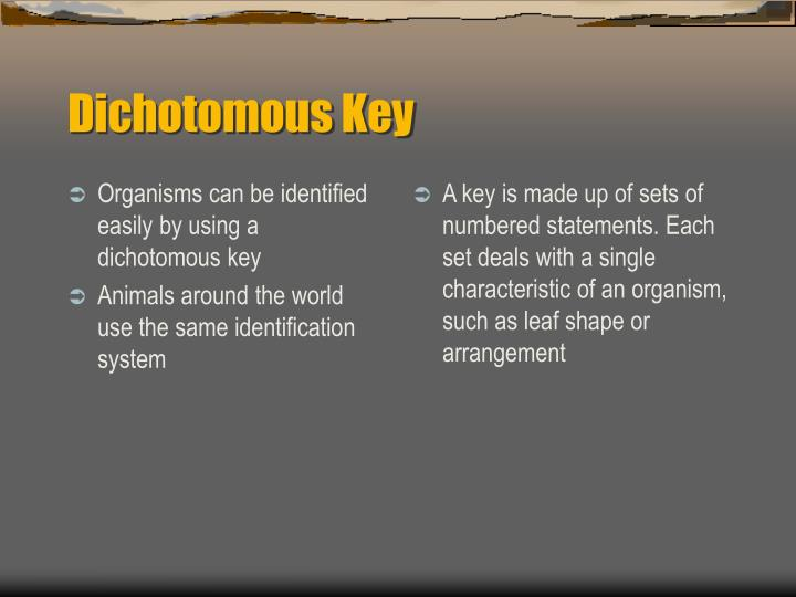 Organisms can be identified easily by using a dichotomous key