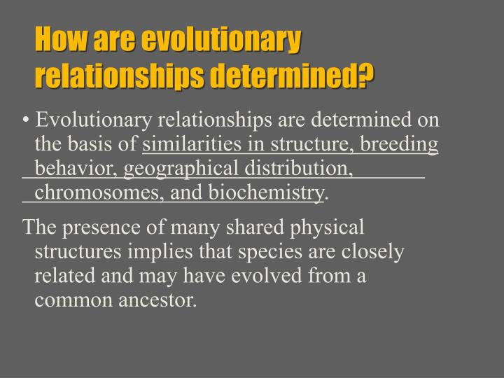 How are evolutionary relationships determined?