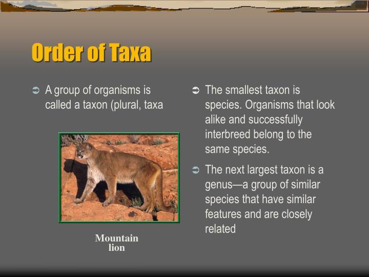 A group of organisms is called a taxon (plural, taxa