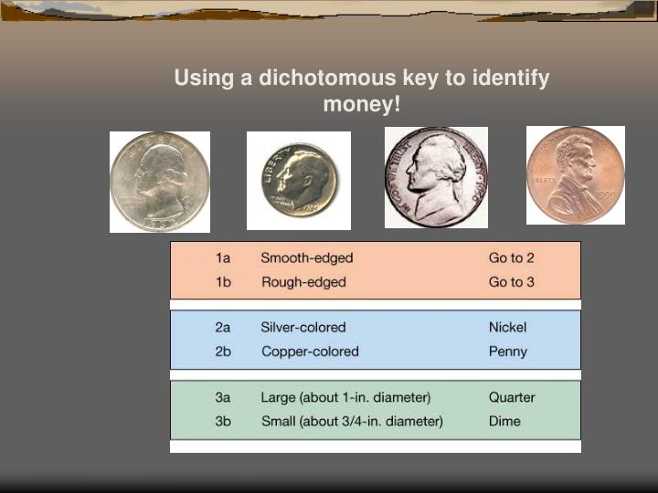 Using a dichotomous key to identify money!