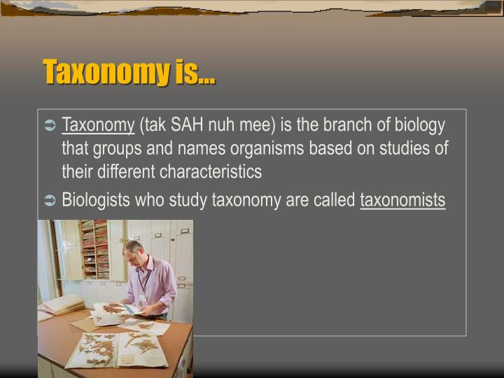 Taxonomy is…