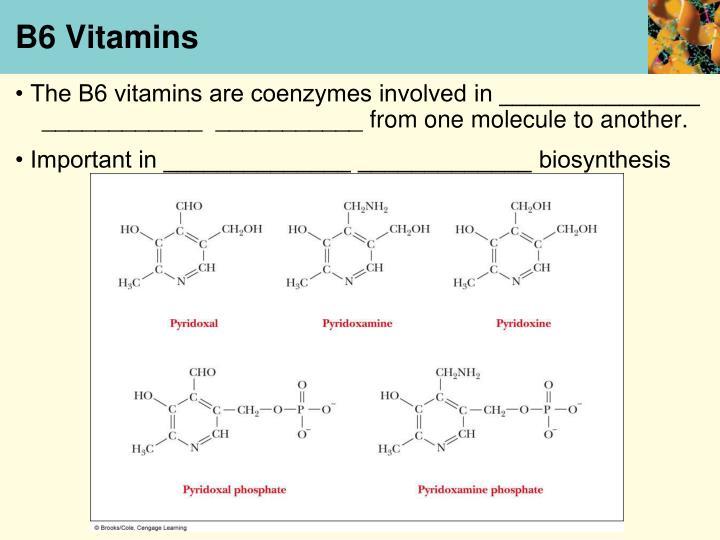 B6 Vitamins