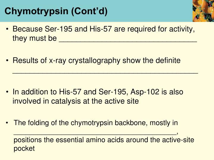 Chymotrypsin (Cont'd)