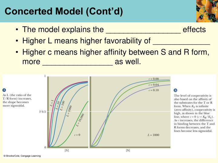 Concerted Model (Cont'd)